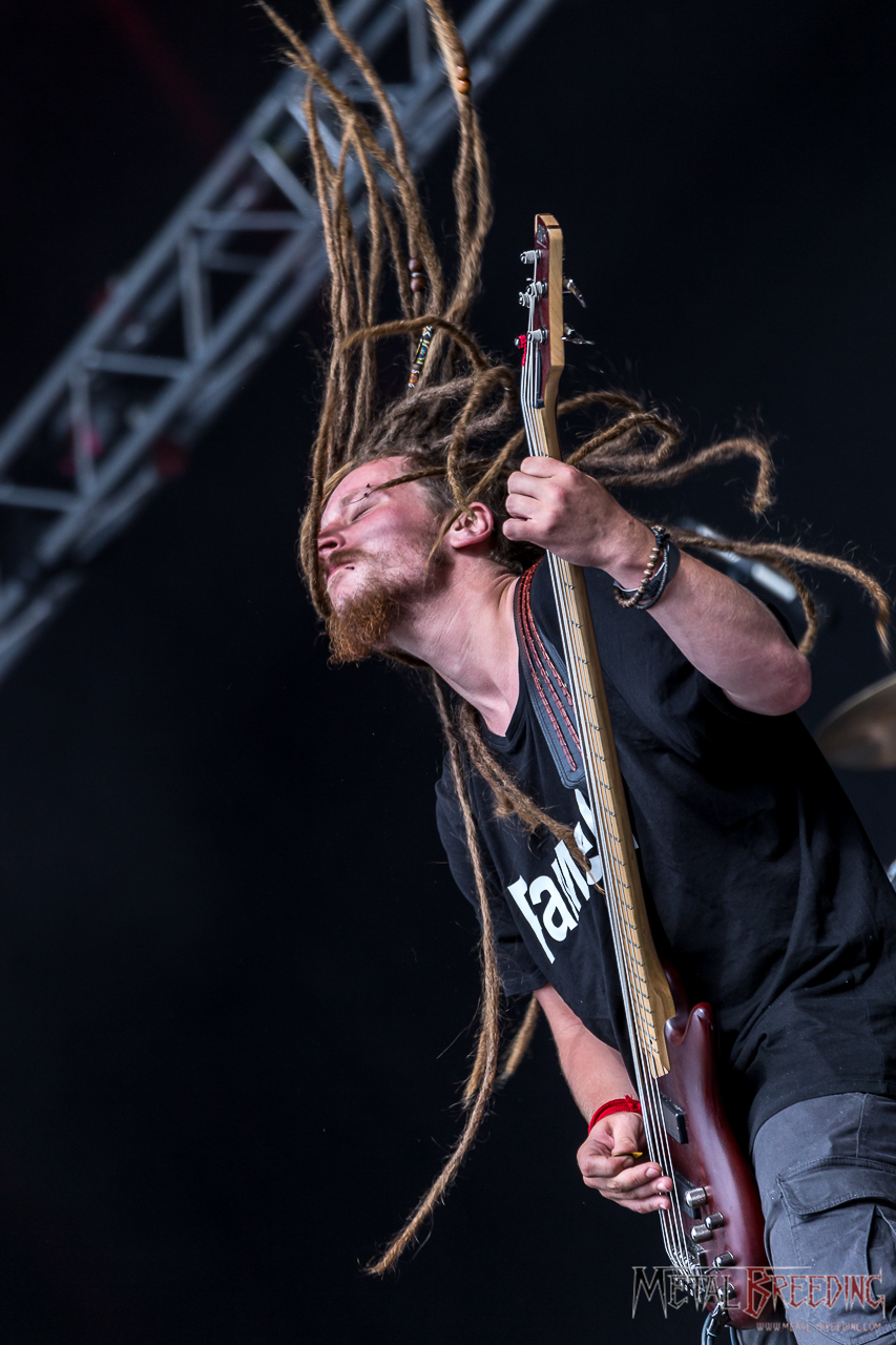 All Rights Reserved by Metal Breeding - Metaldays 2017